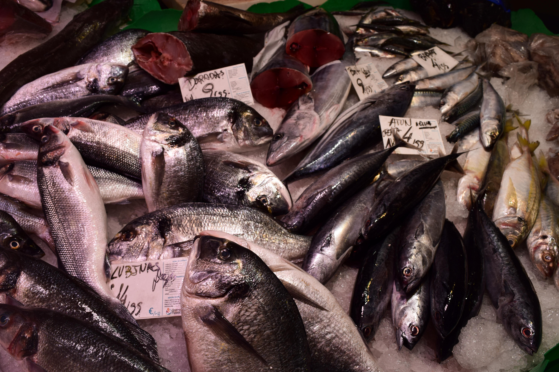 Šviežia žuvis