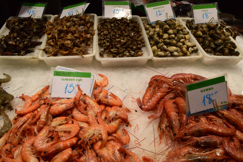 Krevetės ir sraigės